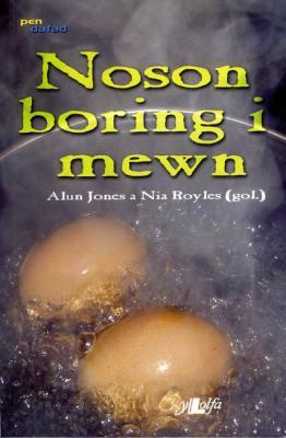 A picture of 'Noson Boring i Mewn' 