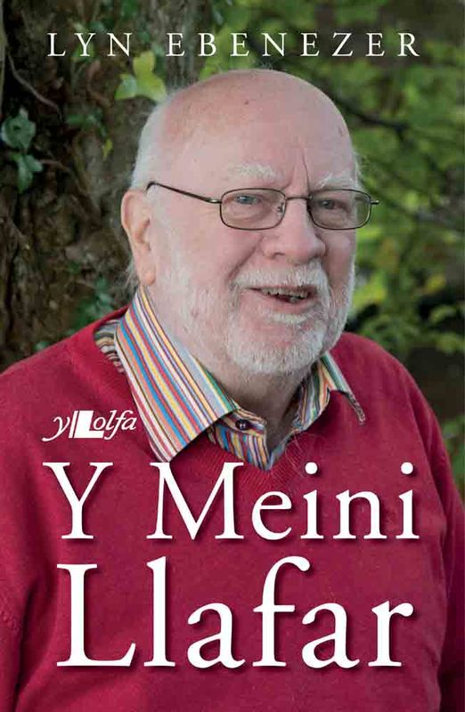 A picture of 'Y Meini Llafar' 