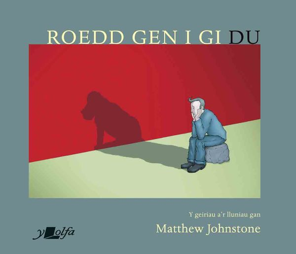 A picture of 'Roedd Gen i Gi Du' 