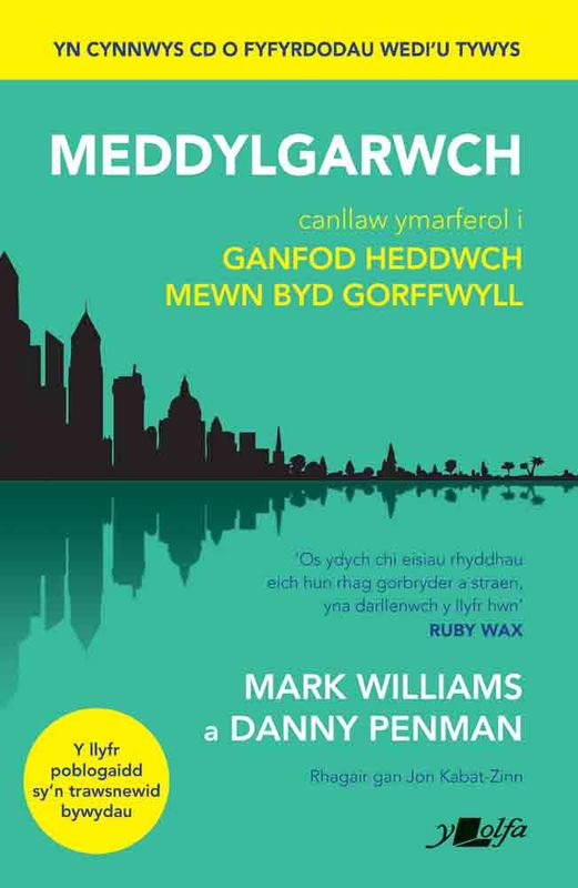 A picture of 'Meddylgarwch' 