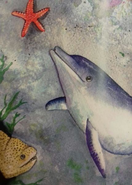 Cardigan Bay dolphins star in new children's book with global warming message